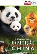 Expedição China