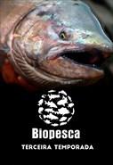 3ª Temporada (Pesca)