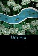 Um Rio