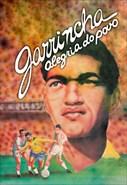 Garrincha - Alegria Do Povo