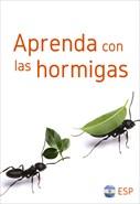 Aprenda con las hormigas