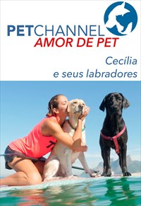Amor de Pet- Cecília e seus Labradores