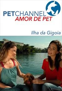 Amor de Pet- Ilha da Gigoia