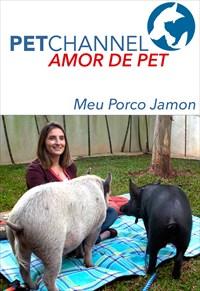 Amor de Pet- Meu Porco Jamon
